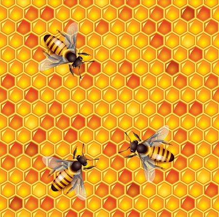 curative: Honey bees and honeycells seamless vector background Illustration