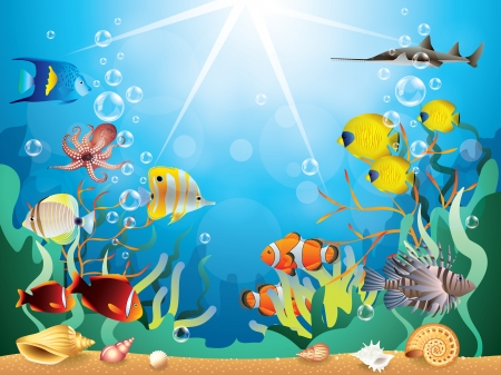 shell fish: Underwater world with reefs and tropical fishes vector illustration
