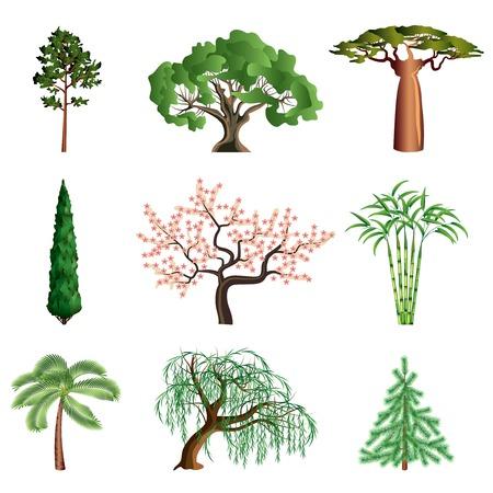 白のカラフルなコレクションに分離された人気のある木  イラスト・ベクター素材
