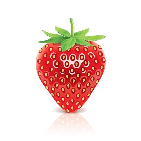 Strawberry geïsoleerd op wit foto-realistische vector illustratie