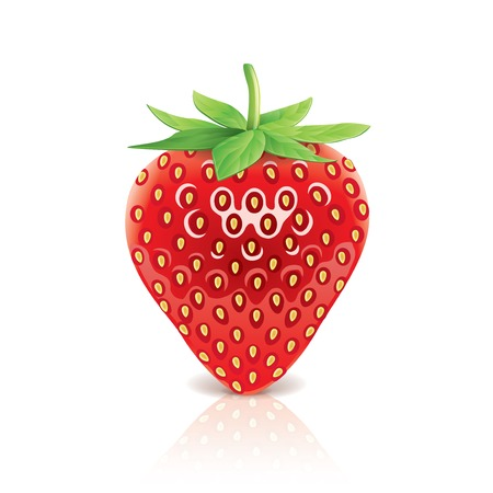 photorealistic: Strawberry isolated on white photo-realistic vector illustration