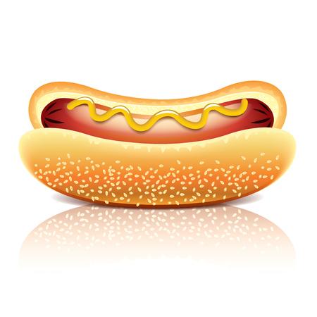 Hot dog isolated on white photo-realistic vector illustration