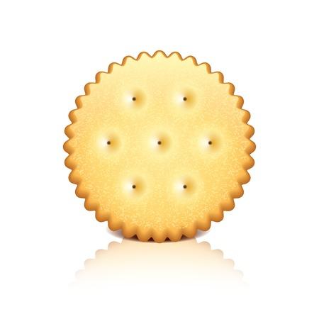 galletas integrales: Galletas Cracker aislado en blanco fotorrealista ilustración vectorial