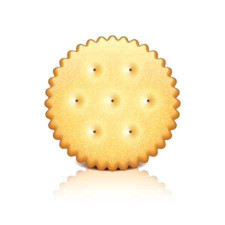 Cracker cookie isolated on white photo-realistic vector illustration