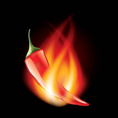 kitchen studio: Chili pepper in fire isolated on black photo-realistic vector illustration