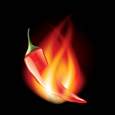 poivre noir: Piment en feu isol� sur noir photo-r�aliste illustration vectorielle Illustration