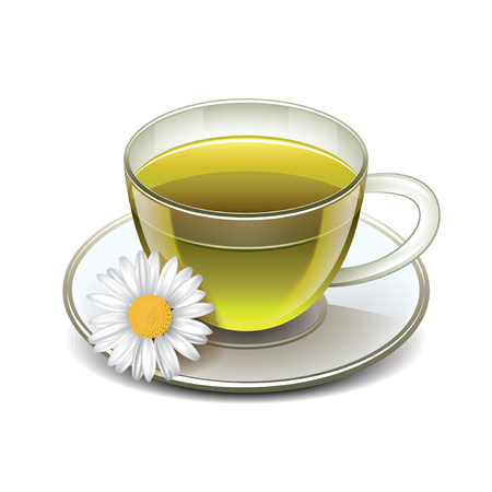 glass cup: Green tea cup with chamomile isolated on white photo-realistic vector illustration Illustration