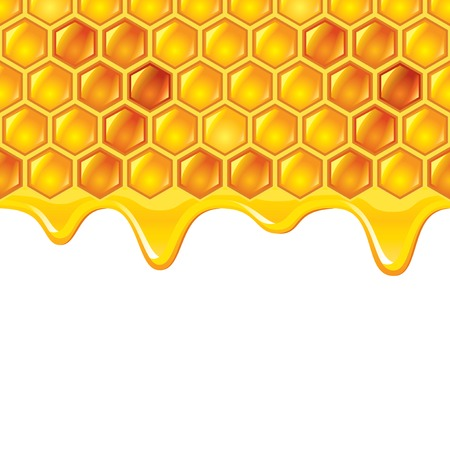Honeycombs with honey photo realistic vector background