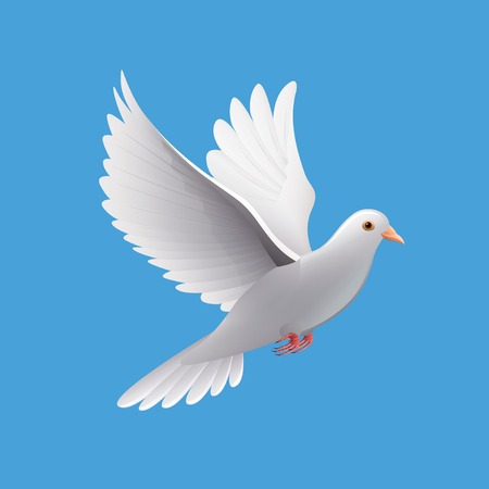 Flying dove isolated on blue photo-realistic vector illustration