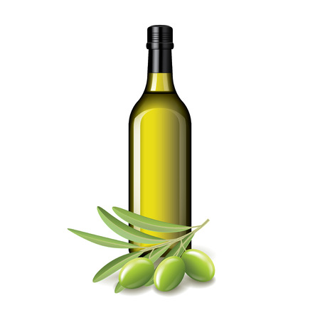 branch isolated: Olive oil bottle and olives isolated on white vector illustration