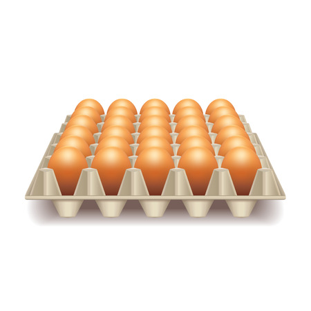 uncooked: Tray with eggs isolated on white photo-realistic vector illustration