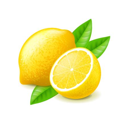 Lemon and slice isolated on white photo-realistic vector illustration