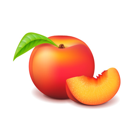 Peach and slice isolated on white photo-realistic vector illustration