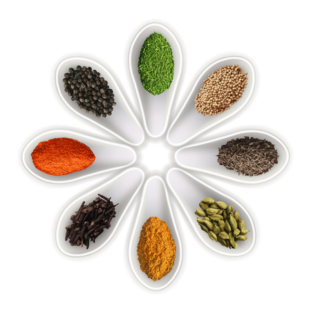 �pices: Les �pices dans les cuill�res isol�s sur photo-r�aliste blanc illustration vectorielle Illustration