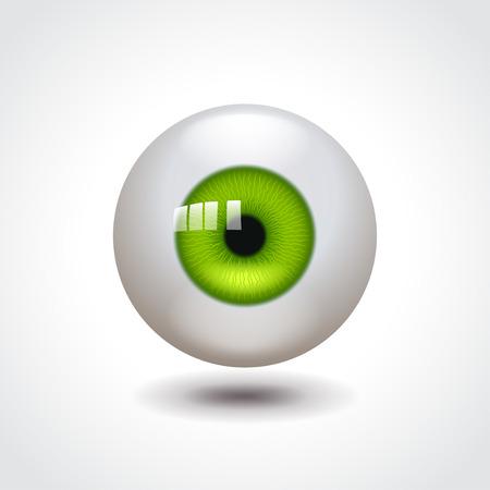 globo ocular: Globo del ojo con el verde del iris foto ilustración realista Vectores