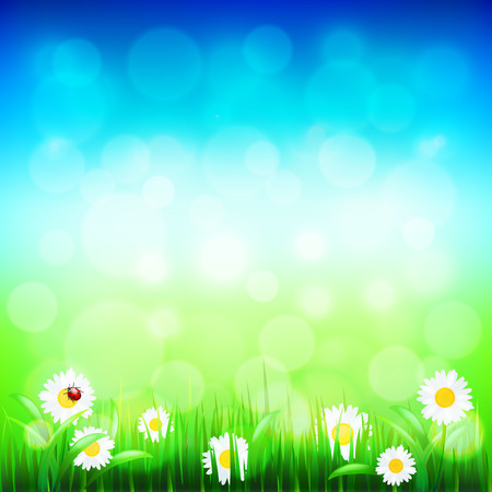 blue and green: Green grass, blue sky bokeh and flowers photo realistic vector background Illustration