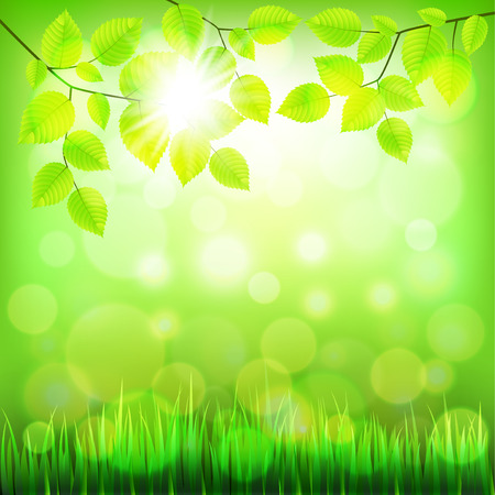 summer nature: Summer nature background with green foliage photo realistic vector