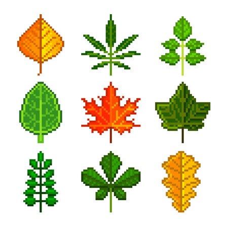 red currant: Pixel leaves for games icons high detailed vector set Illustration