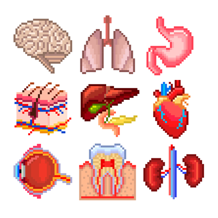 medical art: Pixel human body parts icons high detailed vector set Illustration