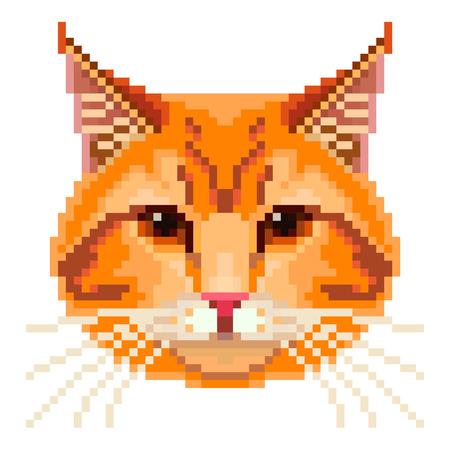 동물: 픽셀 빨간 고양이 얼굴 높은 상세한 격리 된 벡터 일러스트