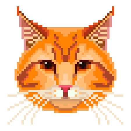 pussy cat: Pixel red cat face high detailed isolated vector