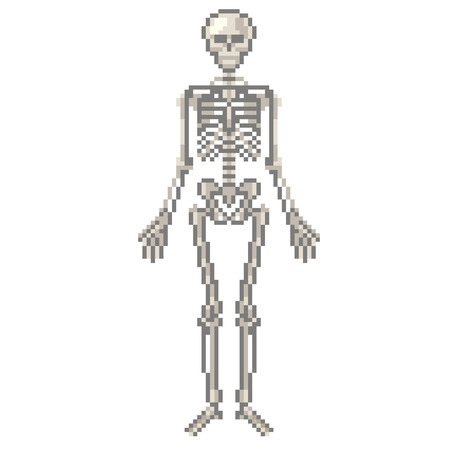 Pixel human skeleton high detailed isolated vector