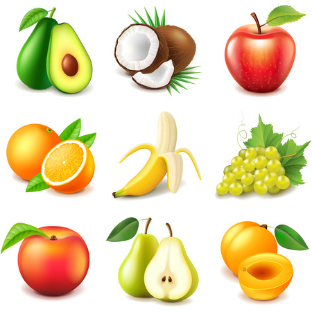 coconut water: Fruits icons detailed photo realistic vector set