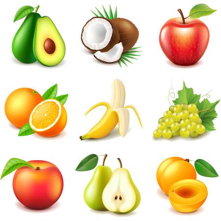 Frutas iconos foto detallada conjunto realista del vector Foto de archivo - 49135699