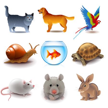 Huisdieren pictogrammen gedetailleerde fotorealistische vector set Vector Illustratie