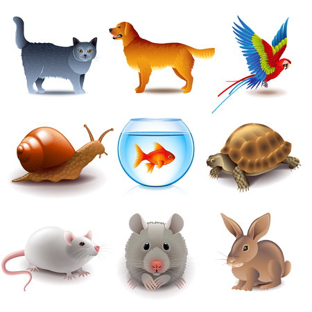animal pussy: Pets icons detailed photo realistic vector set
