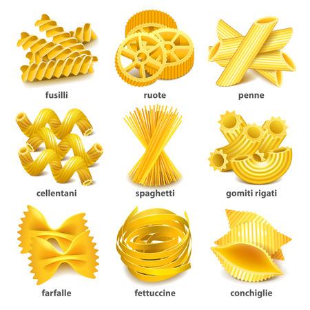 Pasta types icons detailed photo realistic  set