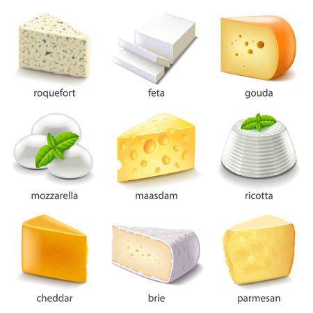Cheese types iconen gedetailleerde vector set
