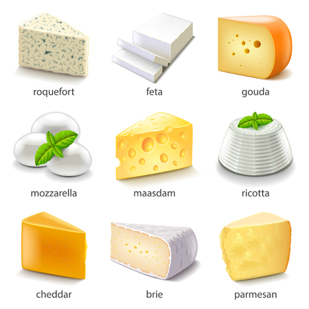 Cheese types icons detailed vector set