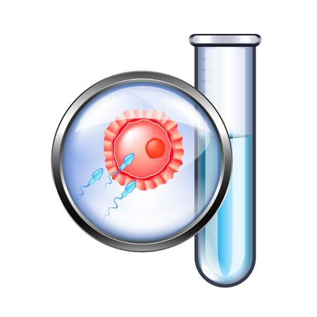 In vitro fertilization IVF isolated photo-realistic vector illustration
