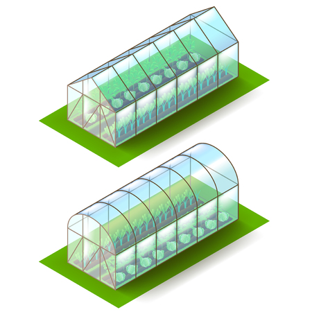 horticultural: Isometric greenhouse illustration.