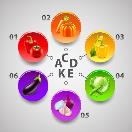 Infographics with vegetables in colorful circles. Illustration