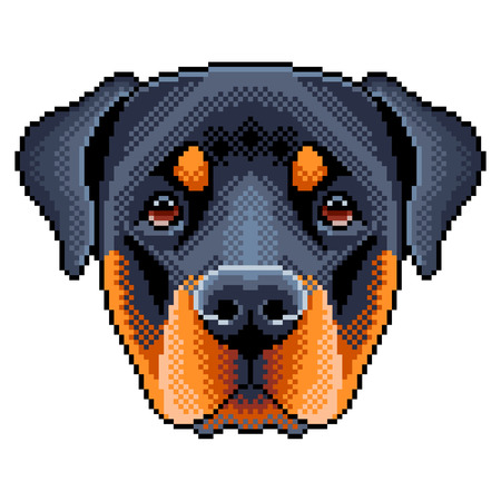 Pixel rottweiler dog face detailed isolated on a white background. Vector illustration.