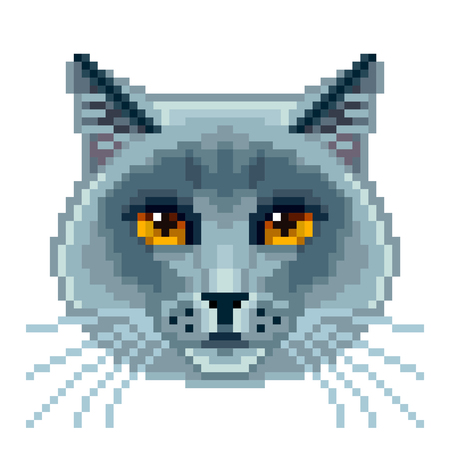Pixel british blue cat face isolated vector photo-realistic illustration