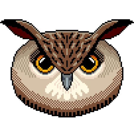 Pixel art owl portrait detailed illustration isolated vector