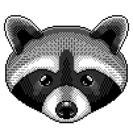 Pixel art raccoon portrait detailed illustration isolated vector Ilustração