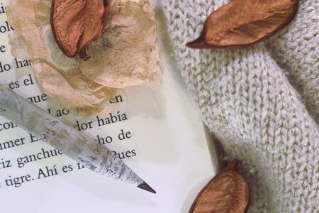 an open book with a pencil on top and some dried sheets