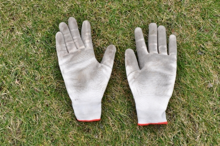 Dirty gardening gloves on the grass photo