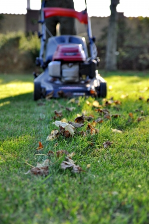 Lawnmower at autumn