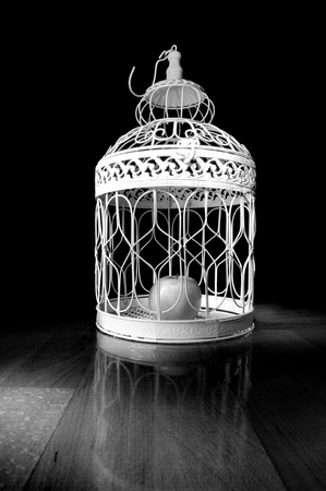 Apple in a cage and dark background Stock Photo - 25856851