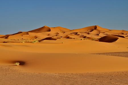 Merzouga desert in Morocco 免版税图像 - 28672471