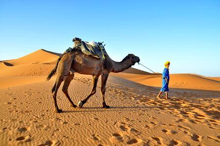 merzouga: MERZOUGA DESERT - OCTOBER 01  Man in traditional  berber wear leads a camel in Merzouga Desert, Morocco on October 01, 2013  Editorial