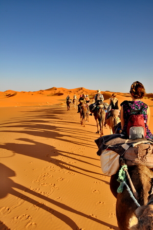 MERZOUGA DESERT - OCTOBER 01  Tourists in a Camel caravan in Merzouga Desert, Morocco on October 01, 2013