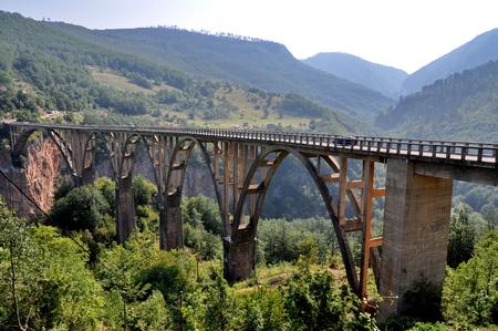 tara: Tara bridge in Monte Negro