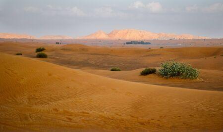 emirates: Desert in Dubai, United Arab Emirates Stock Photo