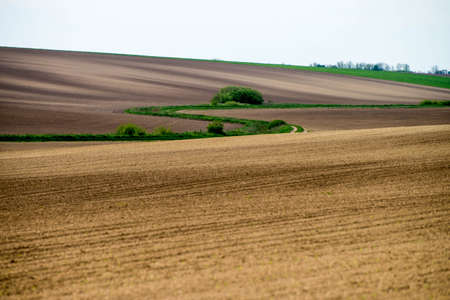 cultivated land: Wavy cultivated land in the countryside Stock Photo